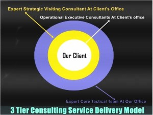 Strategic Consulting Service Delivery Model - A Complete Consultation Tuxedo.
