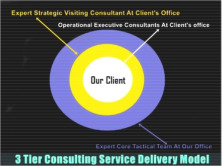 Consulting Service Delivery Strategic Model