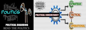 Political Consulting - Turn Voters In Your Favor